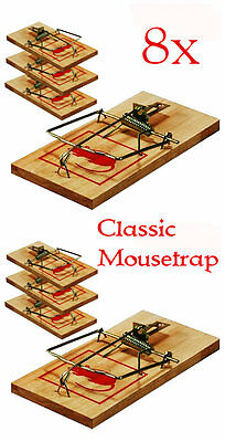 8 Pack Traditional Wooden Mouse Traps Classic Pest Control Rodent Mousetrap