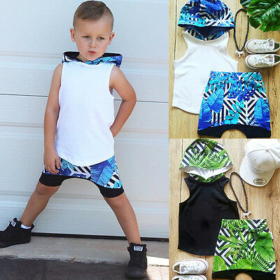 US Seller 2pcs Toddler Kids Baby Boys Hooded T-shirt Tops+ Short Pants Outfits