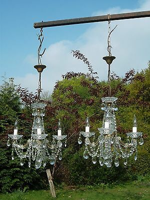 Pretty Pair of Vintage French 3arm glass Maria Theresa chandeliers(8315)