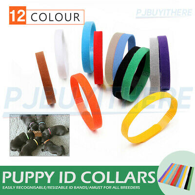 12 x Whelping Puppy Reusable Band Kitten Adjustable ID Collar Pet Dog Cat