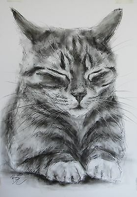 Cat Picture - ORIGINAL A2 Drawing / Sketch - Animal Art by Belinda Elliott
