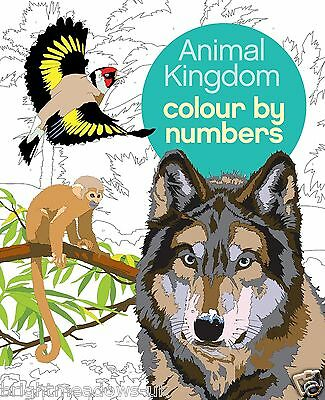 Animal Kingdom Colour By Number Adult Colouring Book Cats Bears Fish Wolf Jungle