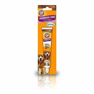 Arm Hammer Dog Advanced Dental Care Toothbrush Tartar Control Beef Toothpaste