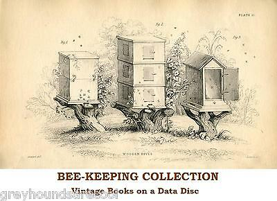 Bees Bee-keeping Honey Production Apiary 35 Vintage Books on a Data Disc