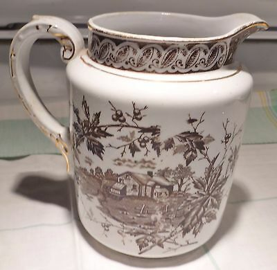 Antique Pitcher-Royal-Ironstone-China-England-Excellent Condition Transferware