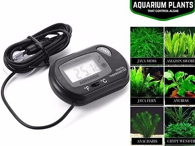Black LCD Aquarium Thermometer Fish Tank Water Terrarium Temperature UK RlTS