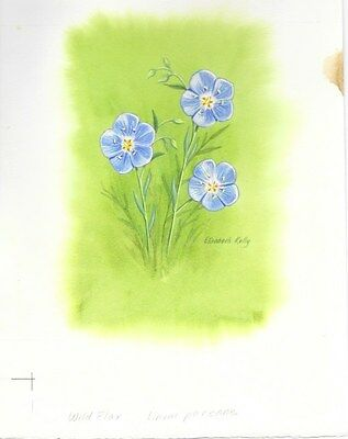 Production Artwork - Wild Flax