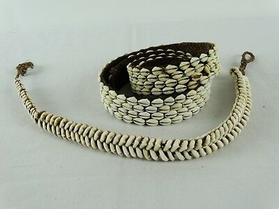 Antique Naga warrior belt decorated with cowrie shells Circa 1930's India  Burma
