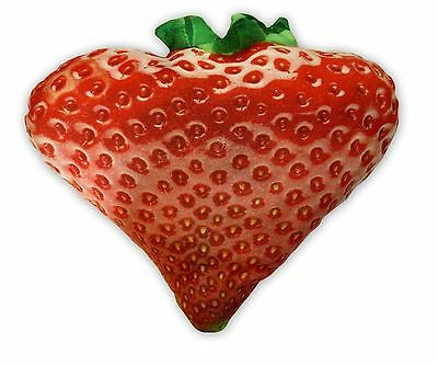 Cheeky Baldrick Realistic HD Strawberry Cushion Novelty Gift Idea Fun New