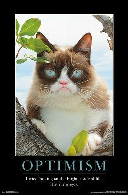 GRUMPY CAT - OPTIMISM MOTIVATIONAL POSTER 22x34 - BRIGHTER SIDE FUNNY 15087