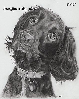 "Commission a pencil portrait of a pet or loved one. 9""x12"". From photograph."