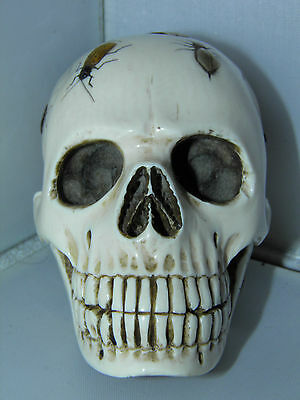 Museum Quality Japanese Meiji Period Shibayama Skull with Insects on & Signed