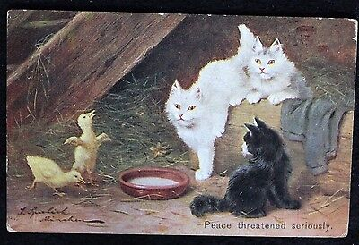 Nice Vintage Cat Postcard Peace Threatened Seriously 1907
