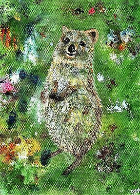 """Quokka"" A4 unframed print from original abstract painting child interest PAMA"