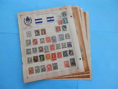 Argentina Old Collection 1867-1940 Extra Fine On Pages Dr Schultz Estate !!9323A
