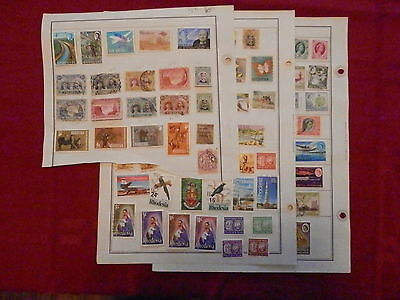 Rhodesia Fantastic Old Collection Pre-1965 On Pages Dr Schultz Estate !!9652R