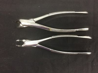 Dental Veterinary Surgical Lower Extracting Forceps Used Vintage Set/2
