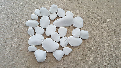 White pebbles, stones for bio ethanol, gas fire, gel fireplaces - best price