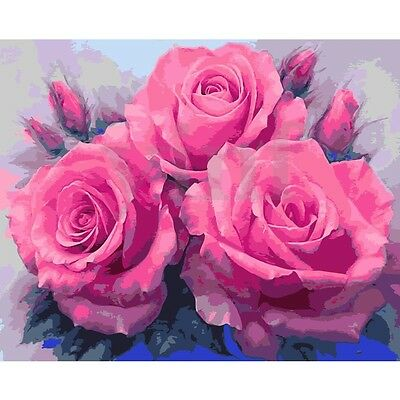 16X20'' Sweet Rose Acrylic Digital Oil Painting By Number Kits DIY Gift No Frame