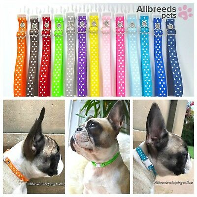 Allbreeds Puppy I.D Whelping Collars, Adjustable Bands, Dog Breeding Kit set