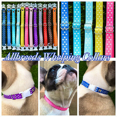 Allbreeds Puppy I.D Whelping Collars, Adjustable Bands, Dog Breeding Set, Kit