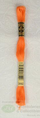 DMC Stranded Cotton Embroidery Floss, 8m Skein, Colour 3892 Light Orange Spice