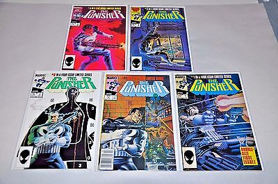 Punisher Limited 1 2 3 4 5 Complete Set Run 1-5 NICE