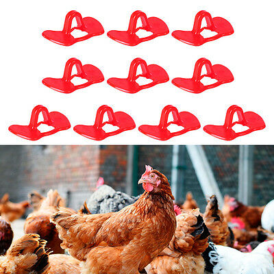 10pcs Pinless Pheasant Chicken Peepers Poultry Blinders Spectacles Eyes Glasses
