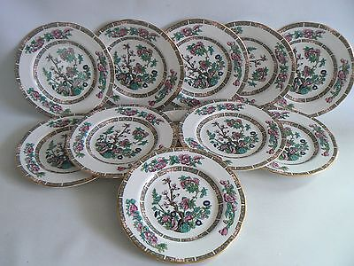 DUCHESS Indian Tree China Side Plates x 11 Size  6.5 inches