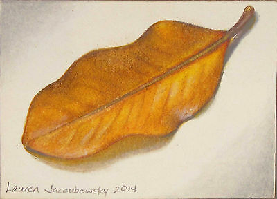 """ACEO Original Colored Pencil Drawing by L.Jacoubowsky - """"Magnolia Leaf"""""""
