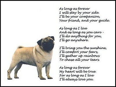 """Beautiful PUG print """"AS LONG AS FOREVER"""" art poem pugs photo picture verse NEW!"""