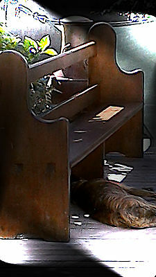 Church Pews. Dog not included. Delivery a possibility