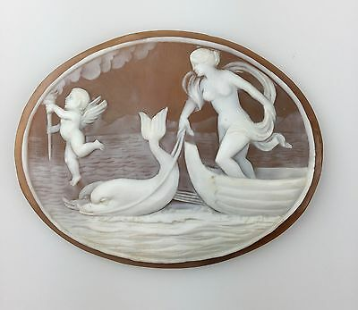 Beautiful Large Victorian Unmounted Shell Cameo of Venus and Cupid