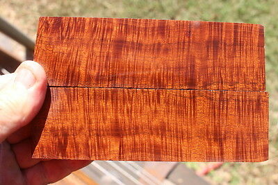 Ringed Gidgee Bookmatched Scales 703