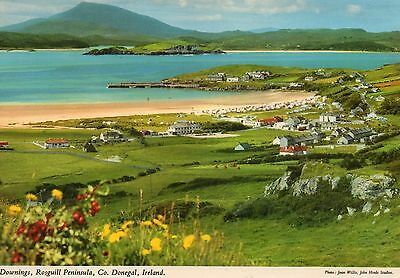 Picture POSTCARD Donegal Ireland Downings Rosguill Peninsula Tranarossan beach