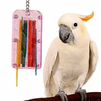 Drop Stix Stick & Refill Caged Bird Toy for Parrots Cockatoos Conures Paraketts