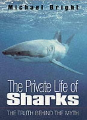 The Private Life of Sharks By Michael Bright