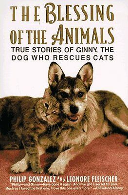 The Blessing of the Animals: True Stories of Ginny, the Dog Who Rescues Cats by
