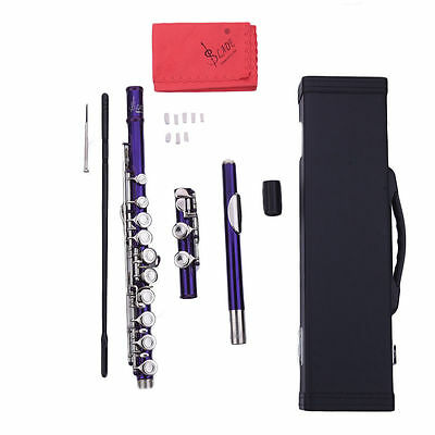 High Quality Cupronickel 16 Hole C Flute for Student Beginner School Band Purple