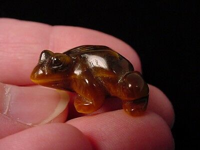 "(y-fro-500) FROG CARVING TIGEREYE brown gem stone gemstone figurine 1"" frogs"