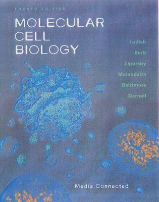Molecular Cell Biology by Harvey Lodish, Arnold Berk, Lawrence Zipursky, Paul Ma
