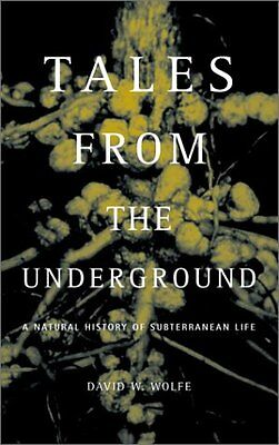 tales from the sustainable underground hren stephen