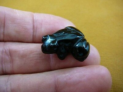 "(Y-FRO-508) BLACK ONYX gem gemstone FROG stone CARVING 1"" little baby frogs"