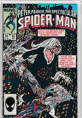 Peter Parker The Spectacular Spiderman 90