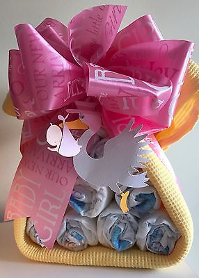 Closeout-Diaper Cake Stork Bundle Baby Shower Gift for Girl- LAST ONE