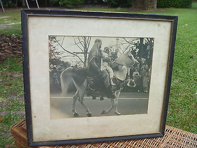 "Old Vintage AS IS 19"" Framed Photograph RAFFLES Arabian Stallion Horse in Parade"