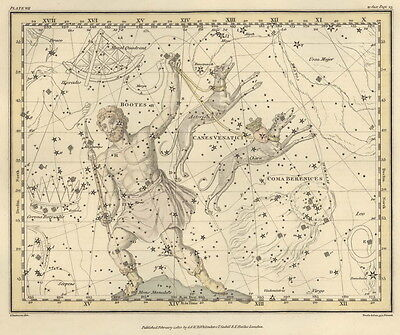 Astronomy star, Celestial astronomy, Map constellations, Vintage poster, decor