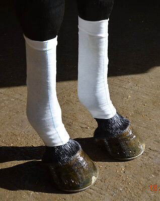 Equi-N-ice Ice Socks - Instant cold treatment for your horse