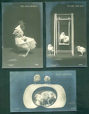 "1906 Rotograph Co. Real Photographs on Bromide Paper ""Chicks"" Postcards"