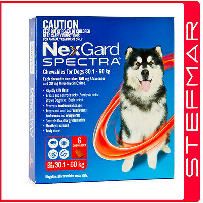 NexGard Spectra Chews For Dogs XLarge 30.1-60kg 6Pack